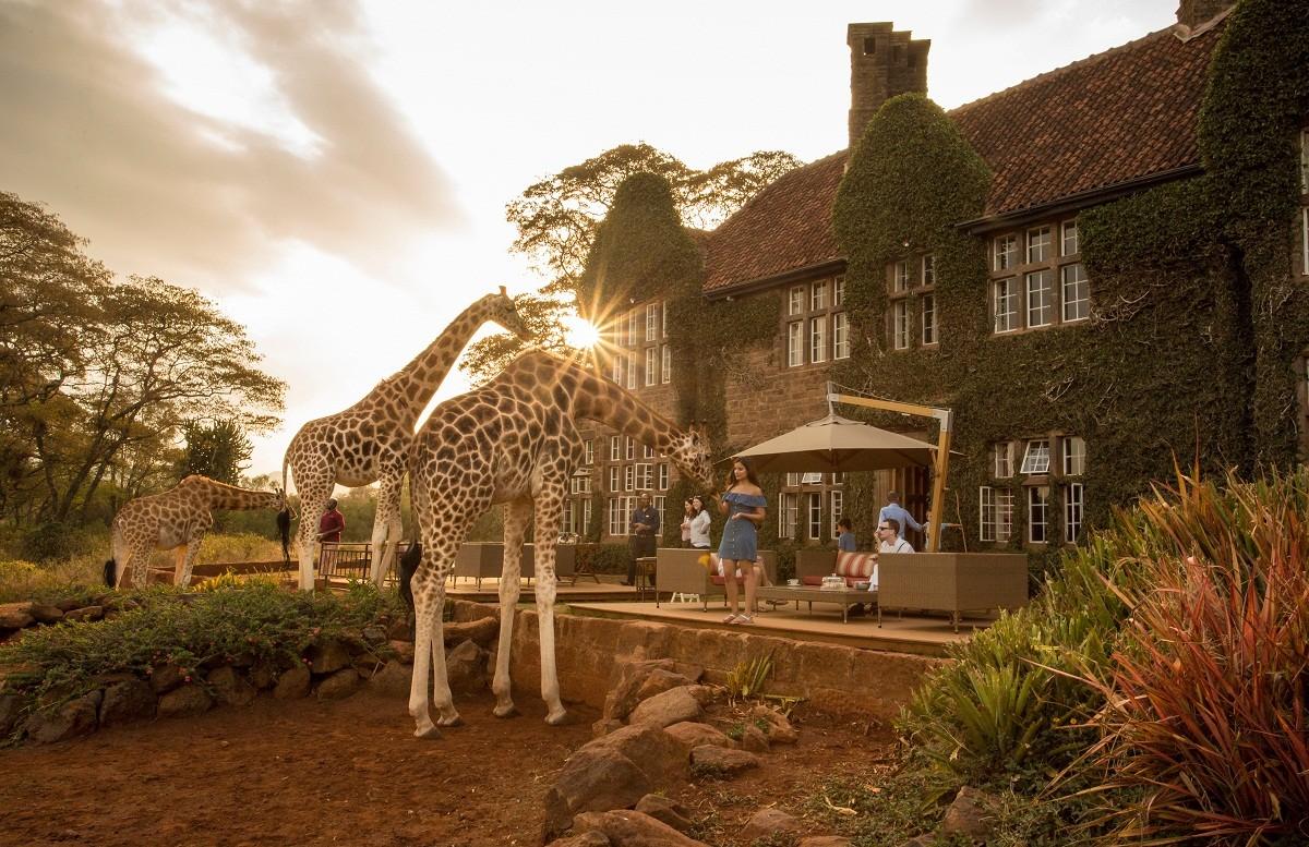 بيت الزرافات في نيروبي