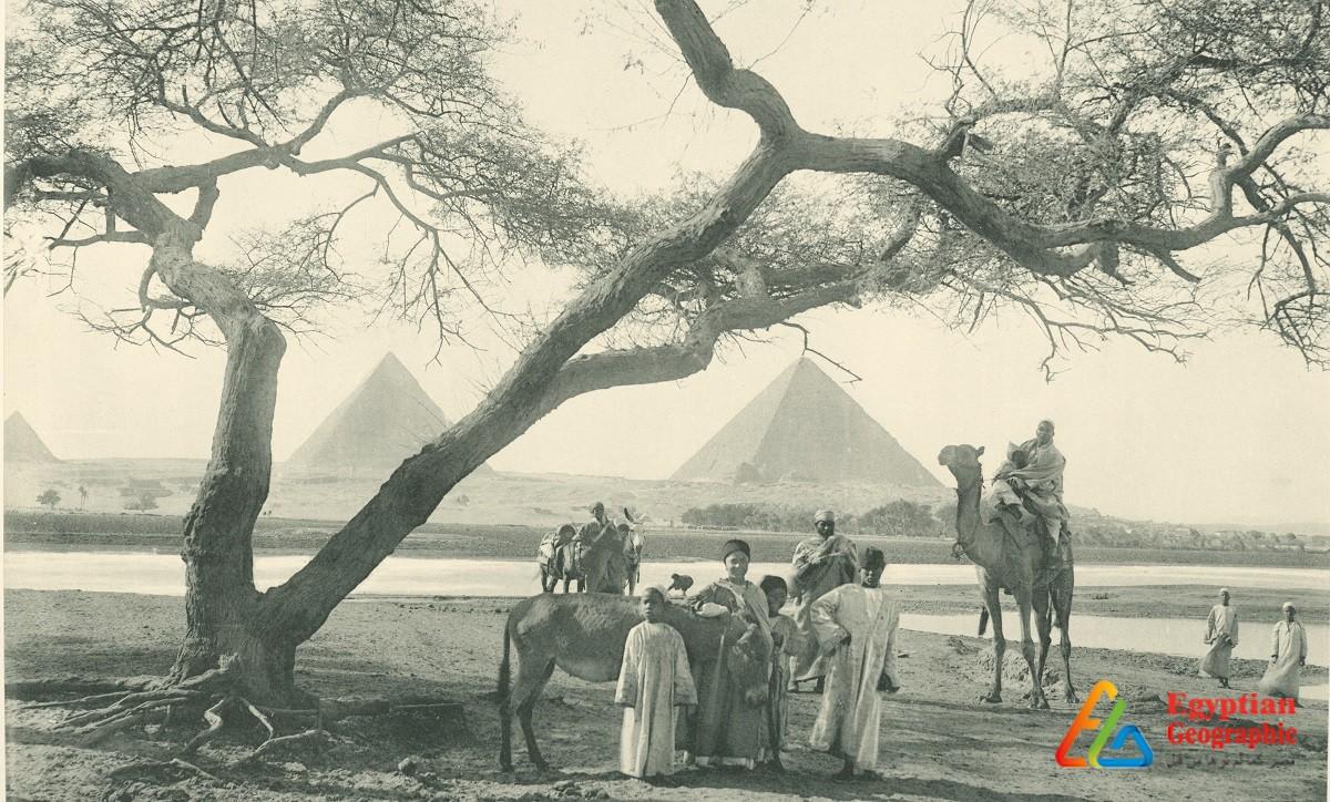 Cحينما كان النيل يصل إلي الأهرامات منذ 160 عام