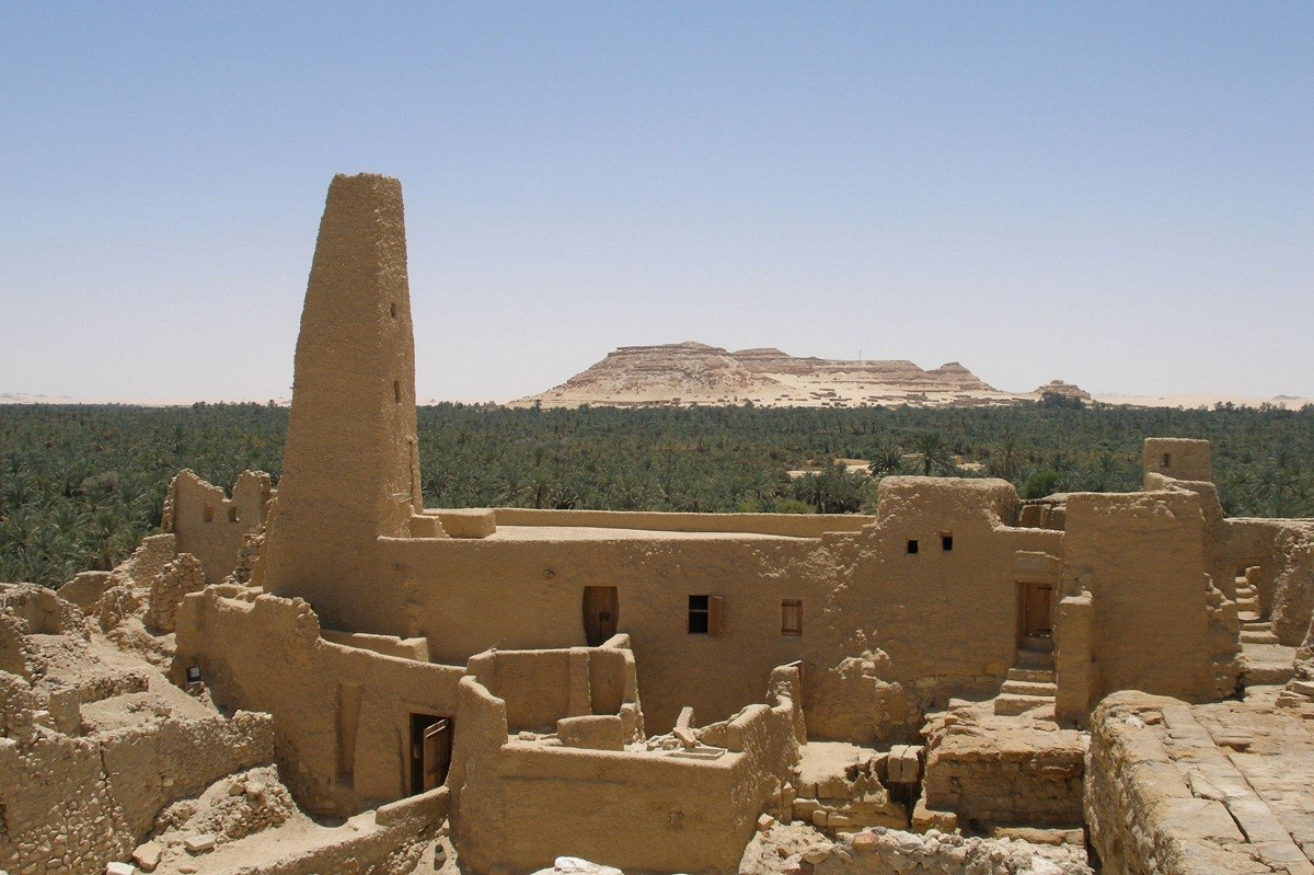 Scenes from Siwa Oasis
