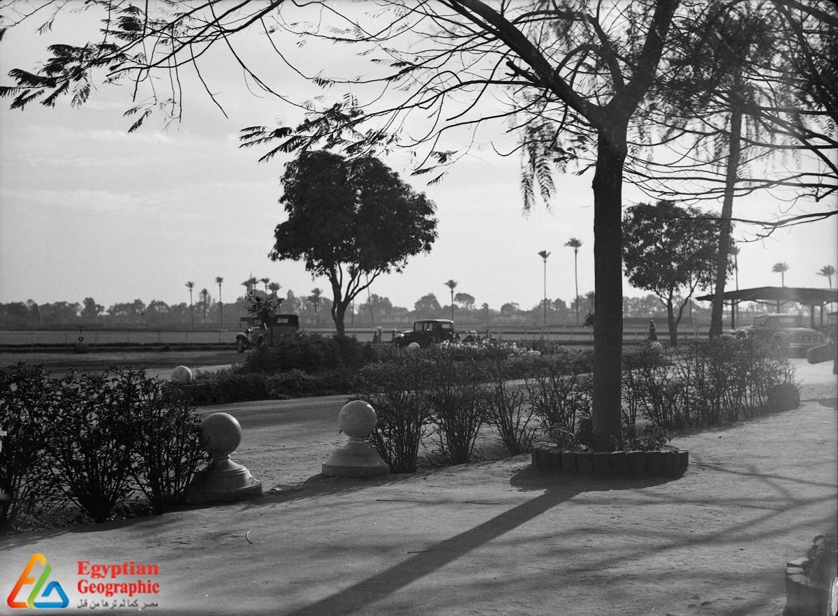 صورة جوية لحي جاردن سيتي عام 1936 - مكتبة الكونغرس - صورة ماتسون