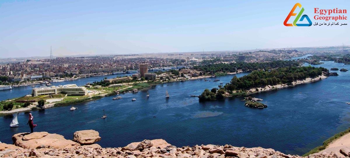 جزيرة النباتات في أحضان نهر النيل