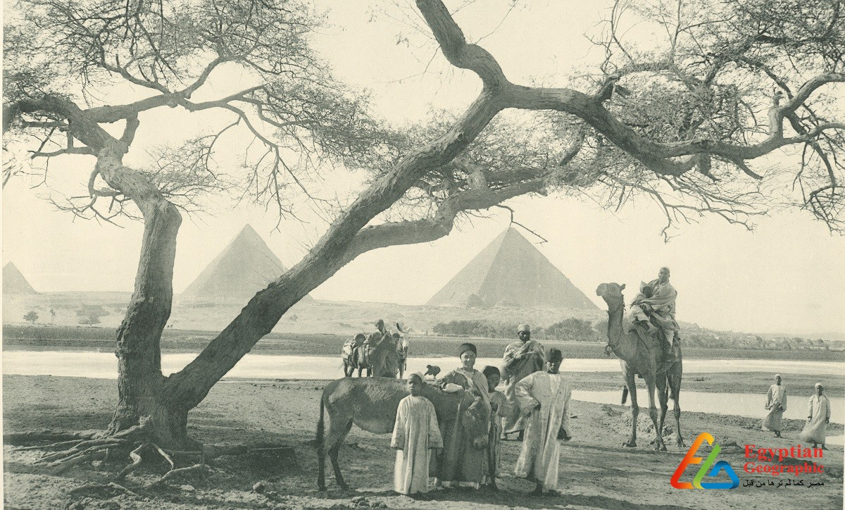 When the Nile was up to the pyramids 160 years ago