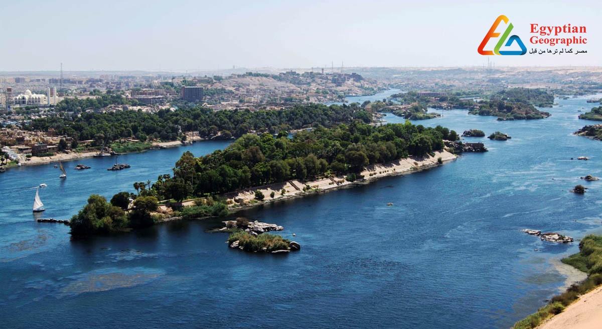 Cجزيرة النباتات.. متحف نباتي في أحضان نهر النيل بأسوان